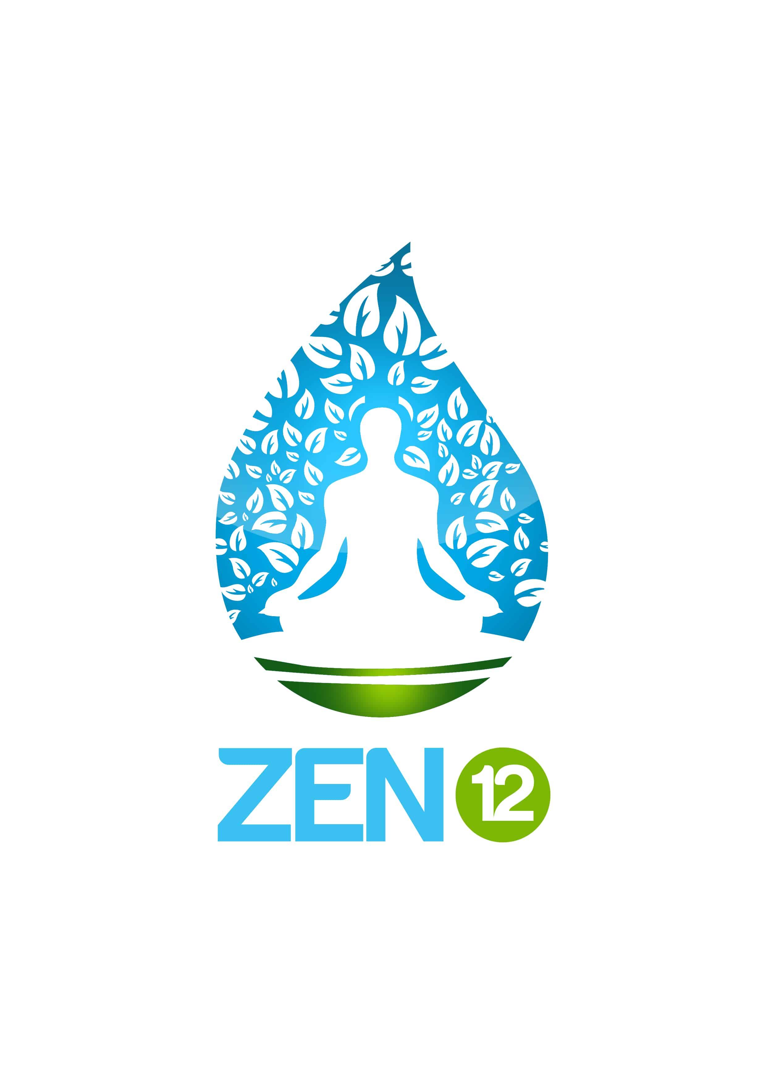Zen12 Meditation Review