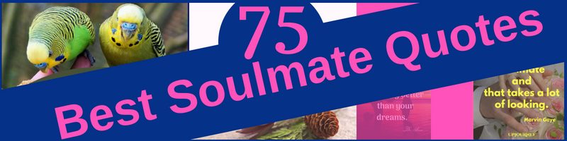 Best Soulmate Quotes Blog Post