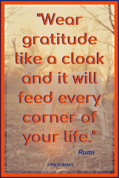 Wear gratitude like a cloak and it will feed every corner of your life. - Rumi #quotes #thankful #thankyou #gratitude #blessing