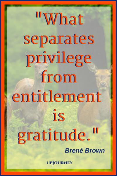 What separates privilege from entitlement is gratitude. - Brené Brown #quotes #thankful #thankyou #gratitude #blessing