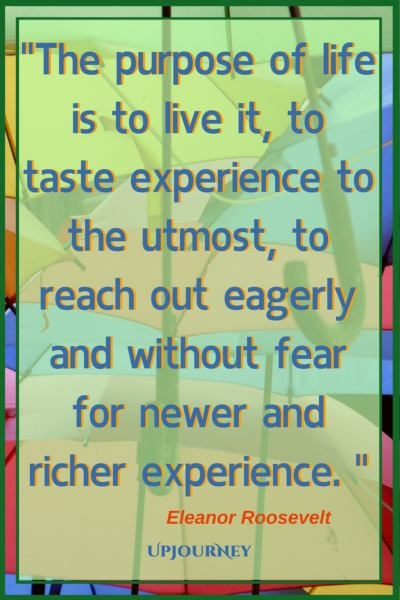 The purpose of life is to live it, to taste experience to the utmost, to reach out eagerly and without fear for newer and richer experience. ― Eleanor Roosevelt #quotes #life #present #today #inspirational #motivational