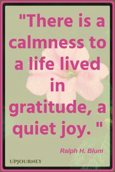 There is a calmness to a life lived in gratitude, a quiet joy. - Ralph H. Blum #quotes #inspirational #gratitude