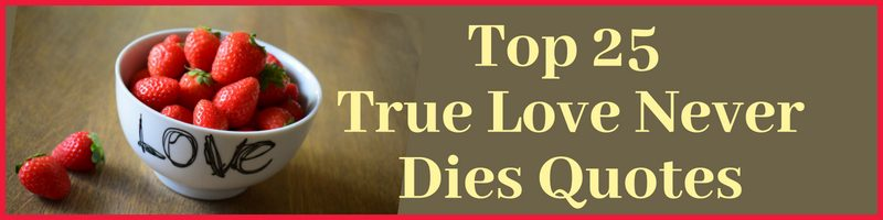 True Love Never Dies Quotes Cover