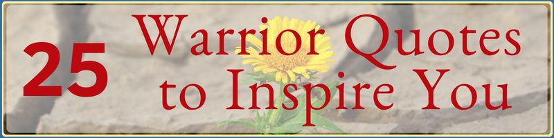 Warrior Quotes Cover