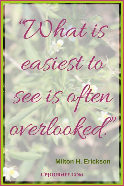 What is easiest to see is often overlooked. #quotes #books #toread #bookworm #hypnosis