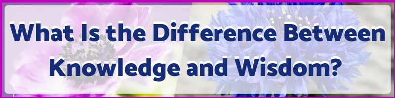 What Is The Difference Between Knowledge and Wisdom Cover