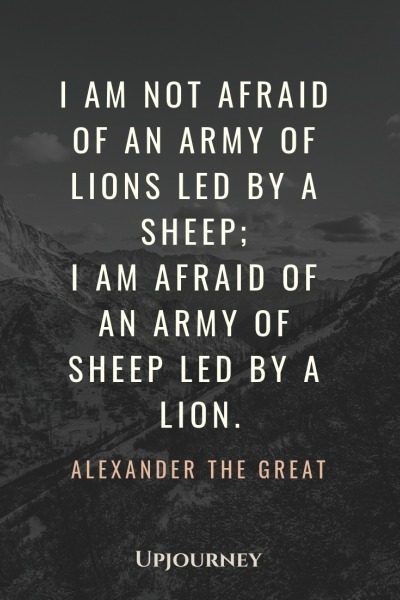 I am not afraid of an army of lions led by a sheep; I am afraid of an army of sheep led by a lion - Alexander The Great. #quotes #war #army #sheep #lion