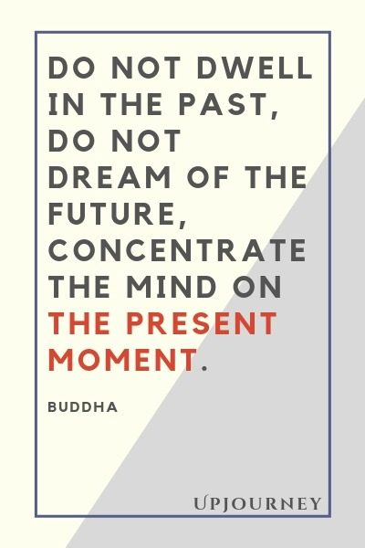 Do not dwell in the past, do not dream of the future, concentrate the mind on the present moment - Buddha. #quotes #life