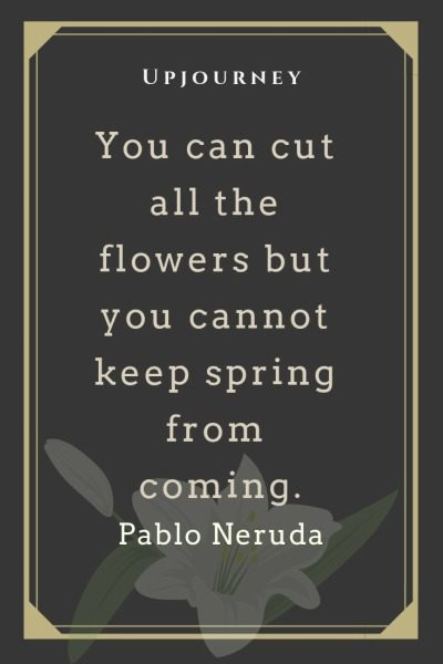 You can cut all the flowers but you cannot keep spring from coming - Pablo Neruda. #quotes #flowers #spring #coming