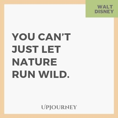 You can't just let nature run wild - Walt Disney. #quotes #nature #wild