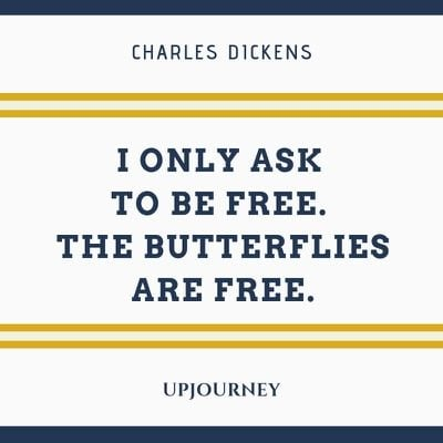 I only ask to be free. The butterflies are free - Charles Dickens. #quotes #free