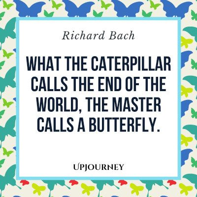 """What the caterpillar calls the end of the world the master calls a butterfly."" — Richard Bach #butterfly #quotes #catterpillar"