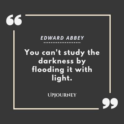 """You can't study the darkness by flooding it with light."" — Edward Abbey #dark #quotes #darkness #light"