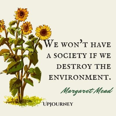 """We won't have a society if we destroy the environment."" #margaretmead #quotes #environment"