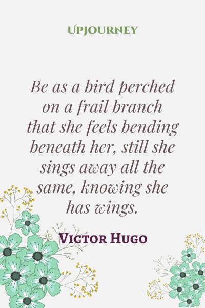 """Be as a bird perched on a frail branch that she feels bending beneath her, still she sings away all the same, knowing she has wings."" #victorhugo #quotes #bird"