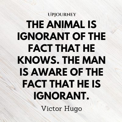 """The animal is ignorant of the fact that he knows. The man is aware of the fact that he is ignorant."" #victorhugo #quotes #animal"