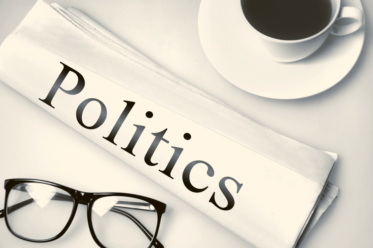 What Is the Main Purpose of a Political Party
