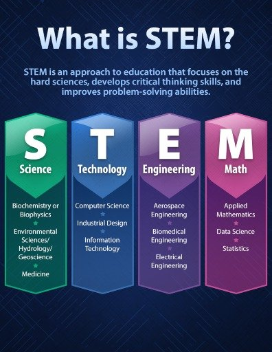 stem meaning