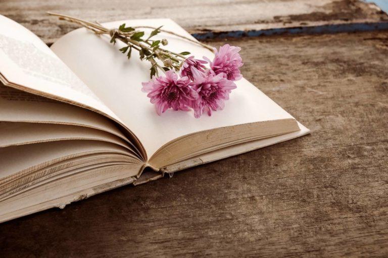 Best Psychological Suspense Books (2 Novels and 3 Short Stories) by Daphne du Maurier